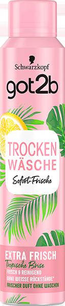 Jetzt bestellen: got2b TROCKENWÄSCHE EXTRA FRISCH Tropische Brise